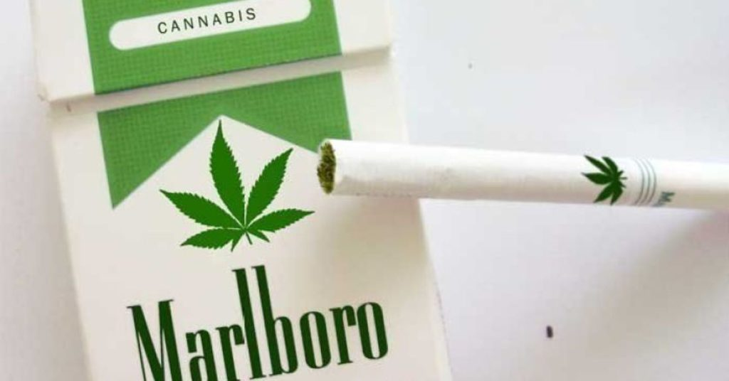 Co-using Tobacco an Cannabis products leading to poorer functioning in young adults
