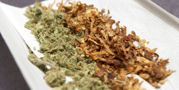 Tobacco and Marijuana in combined form
