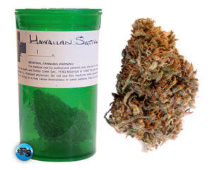 hawaiian sativa