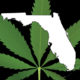 florida-medical-marijuana