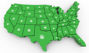 Cannabis Legalization has taken up pace in the recent years. Industry members and Policy experts are speculating that 2021 will be the year for Cannabis Legalization.
