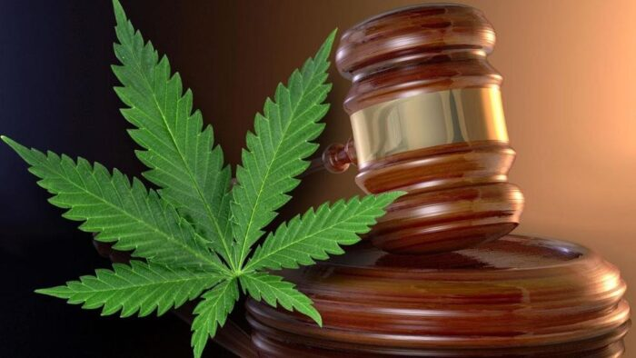 Marijuana activists take their case against DEA to supreme court