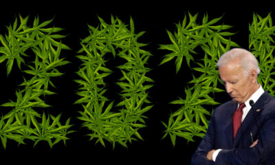 According to Rep. Barbara Lee, Joe Biden's marijuana policies need further evolving.