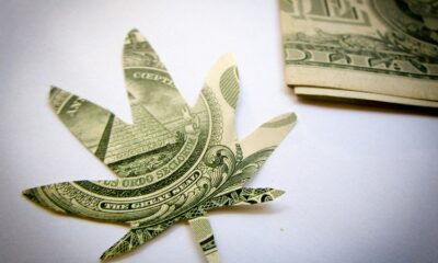 Despite of the global pandemic, the marijuana industry has been able to perform well and proven its resilience.