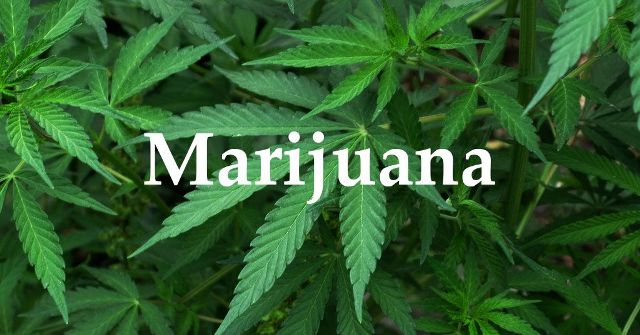 Marijuana has been around us for centuries, but some facts about it have remained unknown among the masses.