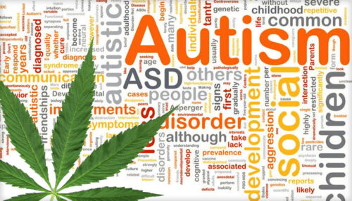 Studies are showing increased connection between autism and marijuana usage
