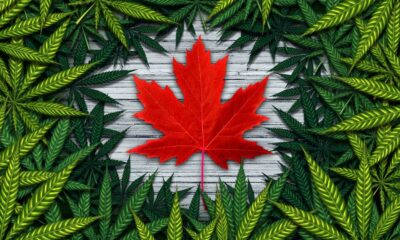 cannabis legalization in canada is a success