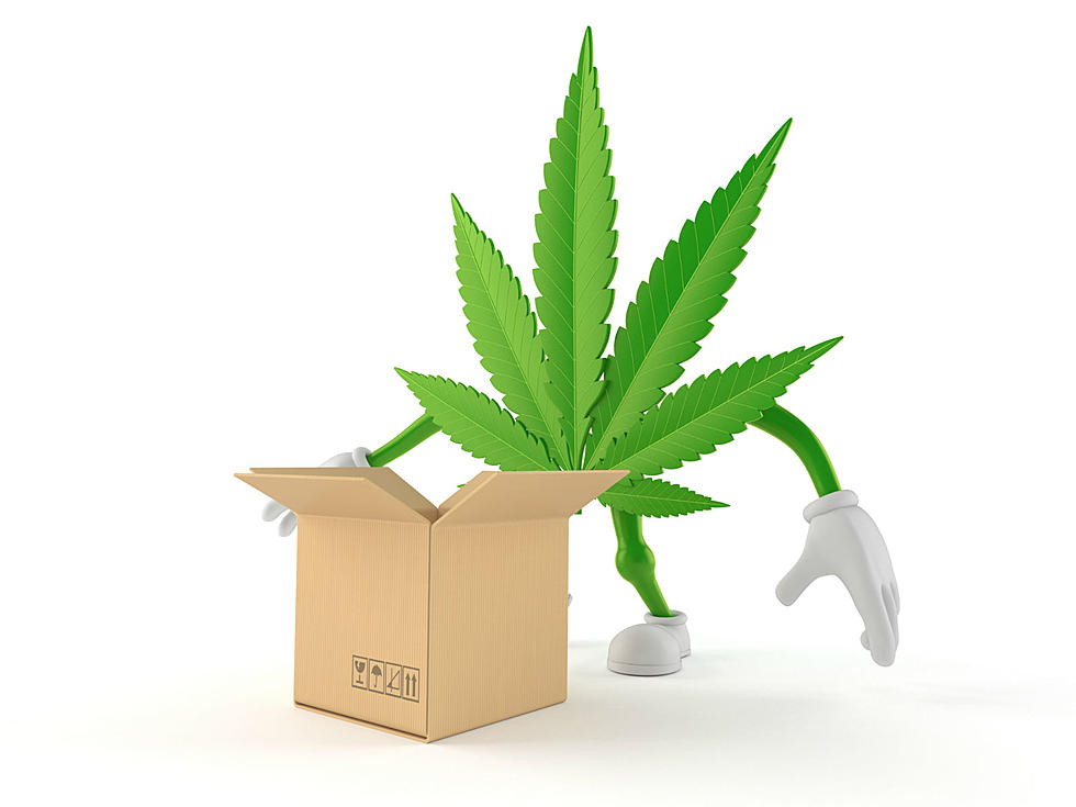CCC is planning to allow cannabis home delivery services in the state of Massachusetts.