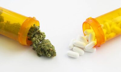 Cannabis Vs Prescription drugs is a topic of increasing debate among experts.