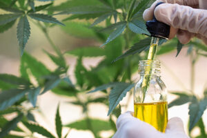 With the passing of a new bill in the House committee, researchers will have access to new sources for carrying out their medical marijuana researches.