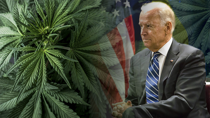 Is Joe Biden's decriminalization of marijuana enough for policy reforms or does he need to do more?