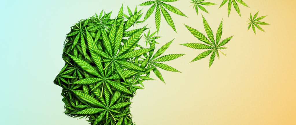 Due to its chemical makeup, it is highly unlikely for anyone to overdose on cannabis