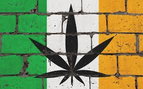 Ireland farmers back cannabis legalization
