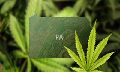Criminal Justice Reforms are being introduced in Pennsylvania to r=undo the damages done by stringent marijuana laws.