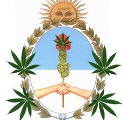 First cannabis medicine in Argentina increases hope for the cannabis industry.