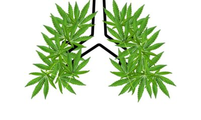 Studies are showing that cannabis derivatives including CBD can be helpful in fighting coronavirus symptoms