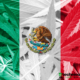 New cannabis reforms in mexico have legalized adult-use will legalize adult-use marijuana upon approval.