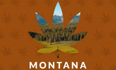 Montana is going to witness reforms in its marijuana laws through Initiative 190.