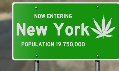 Social and Economic Equity a Priority in New York Cannabis Legislations