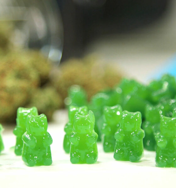cannabis infused sweets