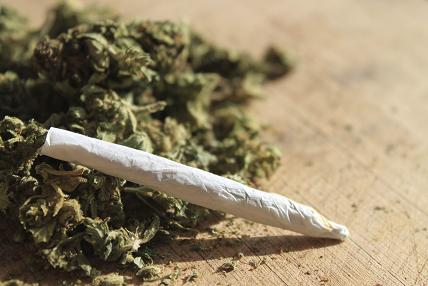 Yale University Researches On Cannabis Use Disorder
