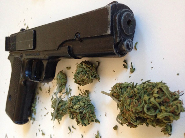 cannabis users should stay away from guns