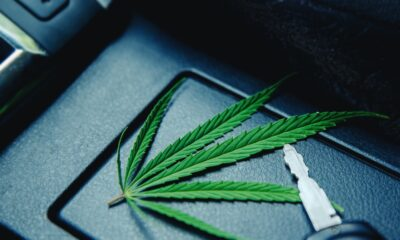 Cannabis Related Accidents On The Rise After Marijuana Legalization